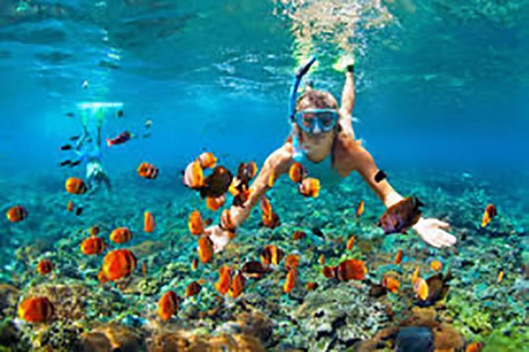 Snorkeling at Porto Marie Curacao - Vacation Rental Curacao